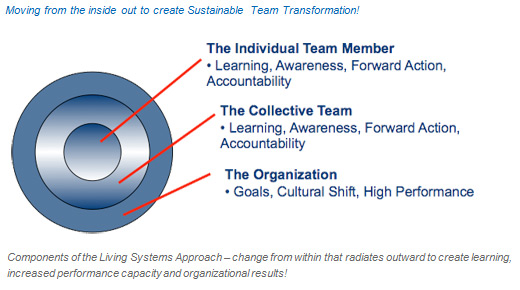 Living Systems Approach